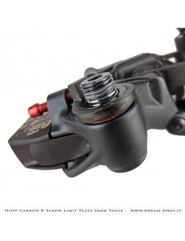 Hopp Carbon Piastrina Registro Tensione Cambio Sram 12v AXS, XX1 Eagle, X01 Eagle, Tuning